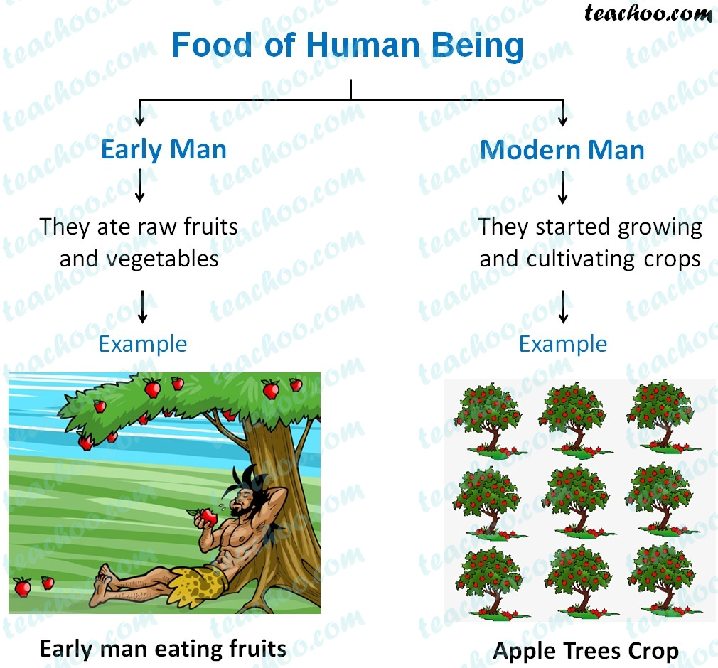 difference-in-foods-of-human-being--early-man,-modern-man (1).jpg