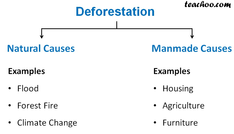 Deforestation - Natural and Manmade Causes - Teachoo.jpg