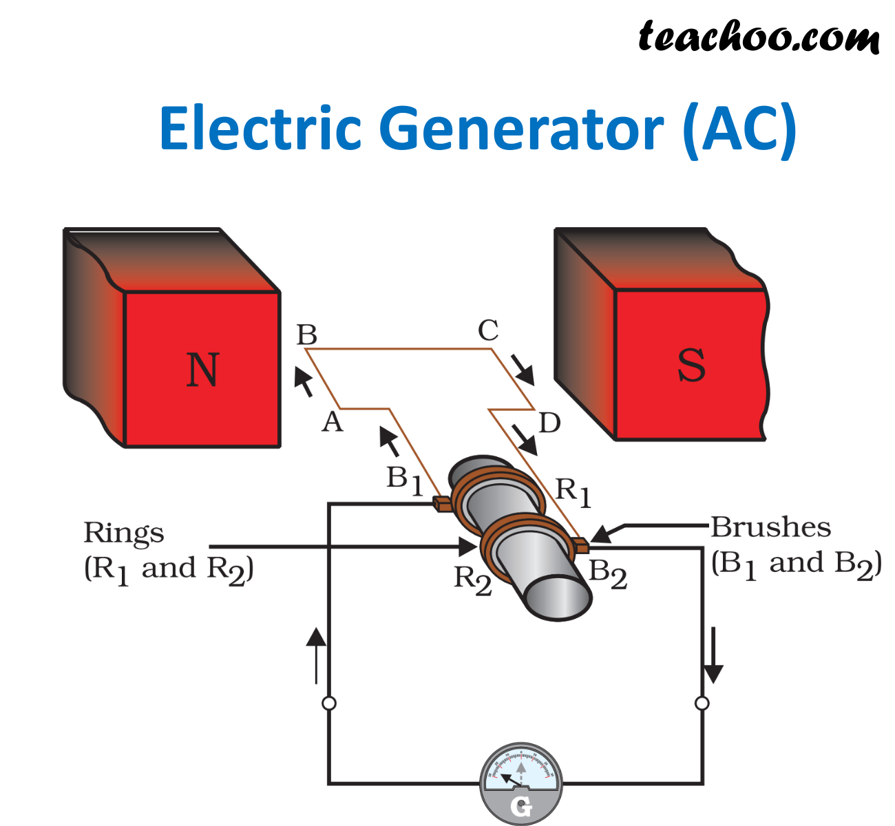 Ncert Q16 Explain The Principle And Working Of An Electric Generator