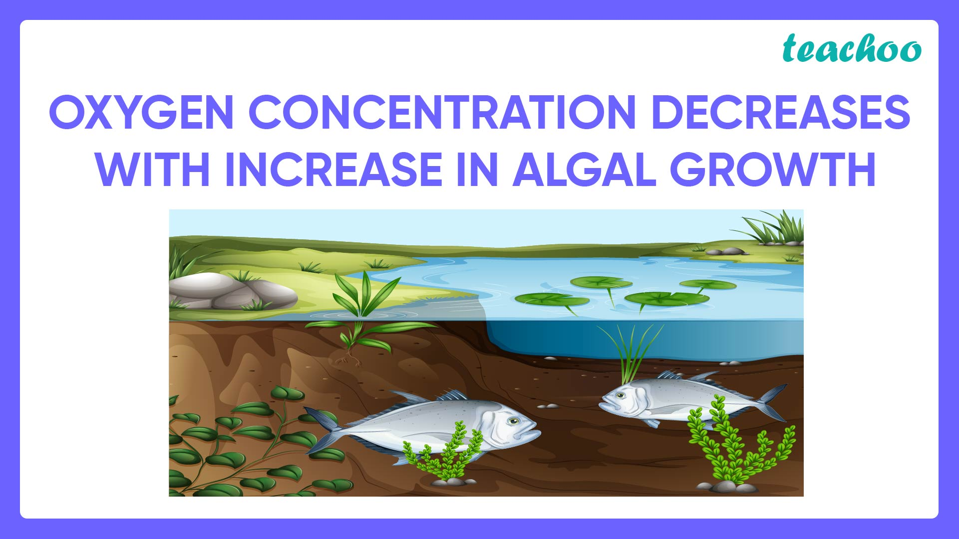 Oxygen Concentration Decrease with increase in Algal Growth-Teachoo-01.jpg