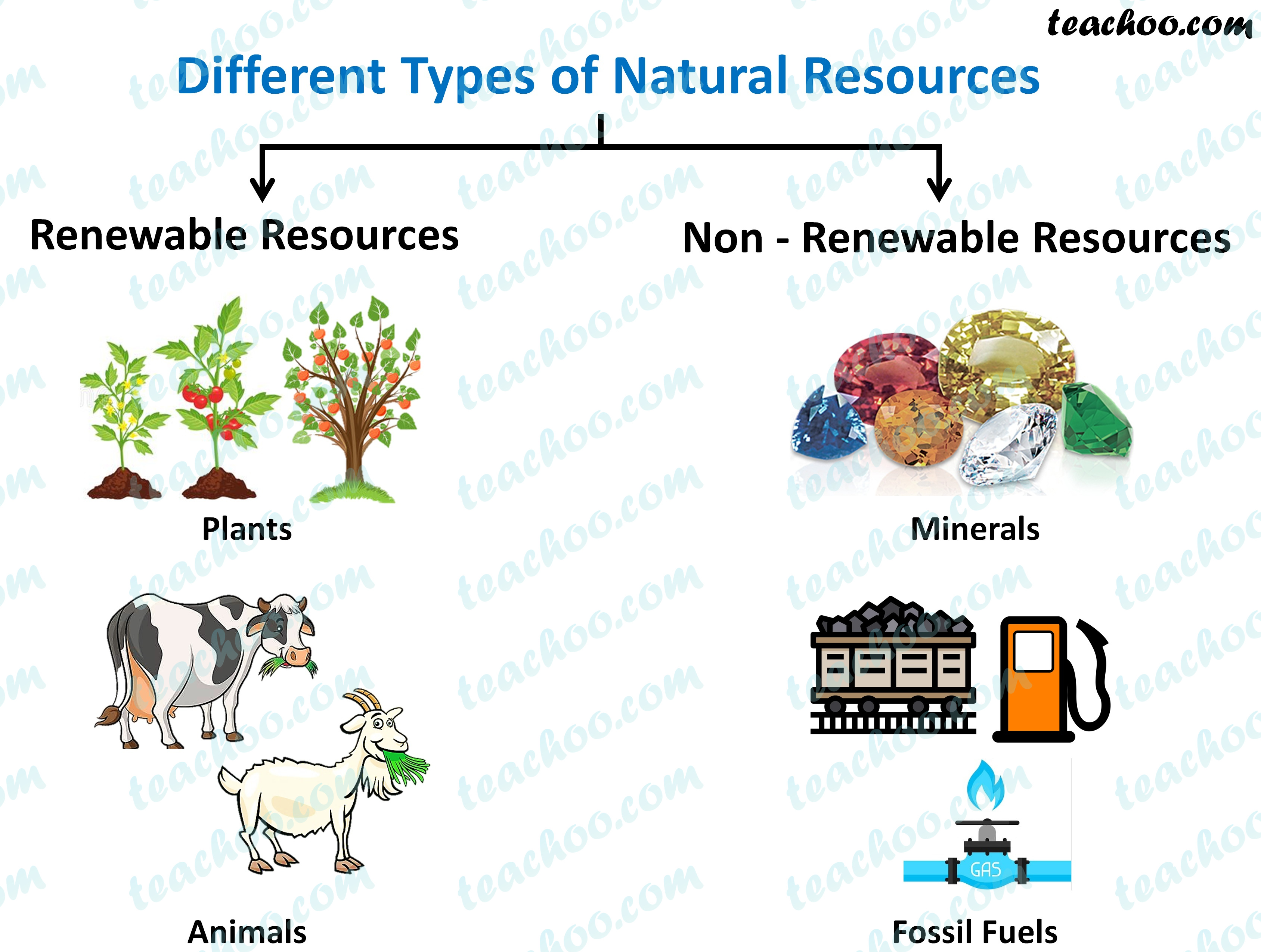 different-types-of-natural-resources---teachoo.jpg