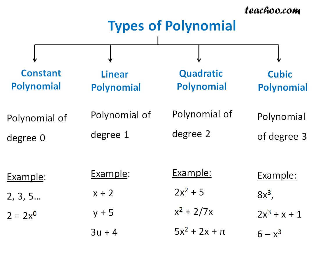 Types of polynomial.jpg
