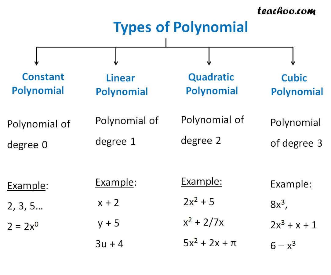 differnet types of polynomial constant linear quadratic teachoo