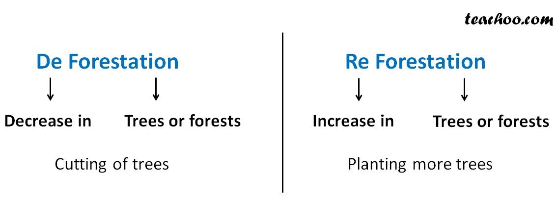 De Forestation and Re Forestation.jpg