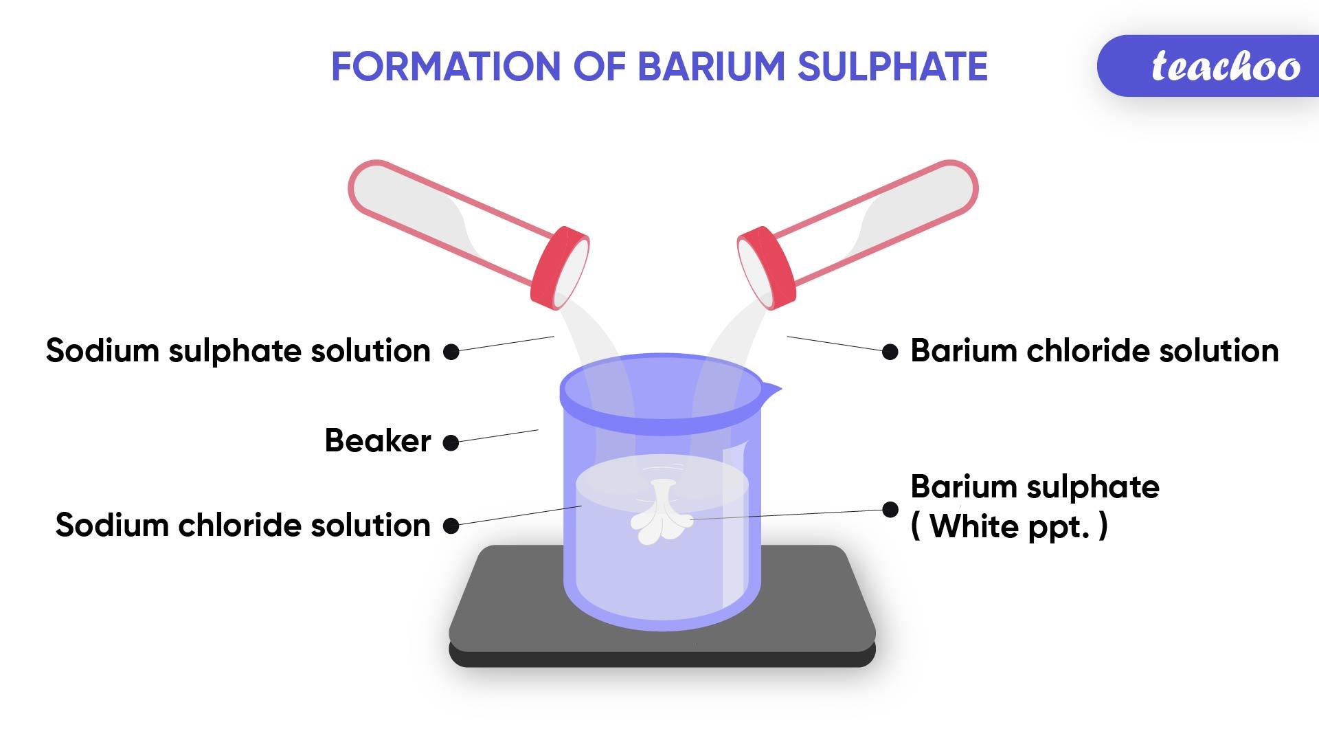 Formation of Barium Sulphate-Teachoo-01.jpg