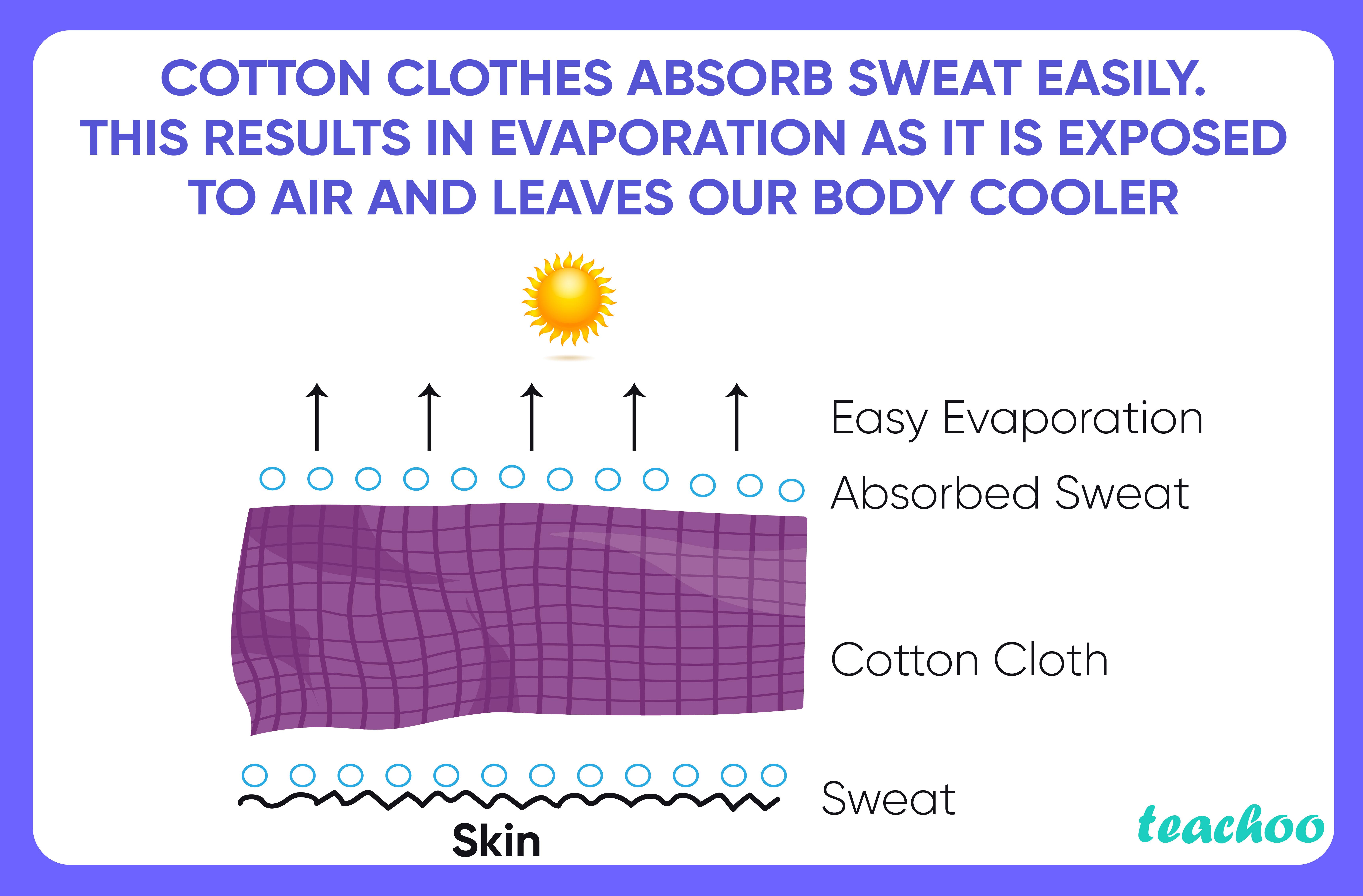 Cotton clothes absorb sweat easily-Teachoo-01.jpg