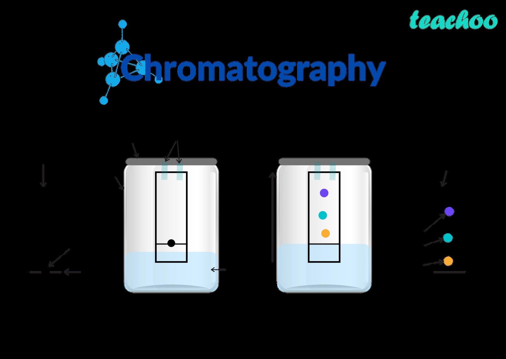 chromatography - Teachoo.png