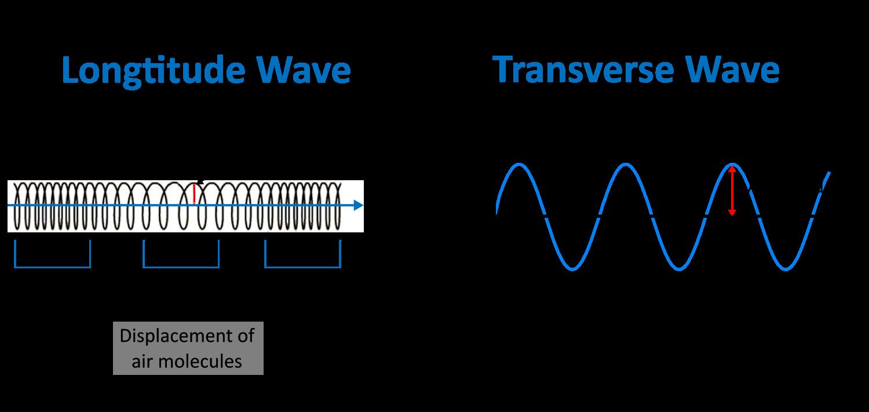 Longitude Wave vs Transverse Wave.png
