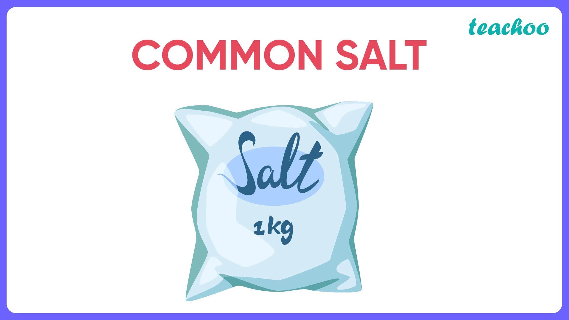 Common Salt-Teachoo.jpg