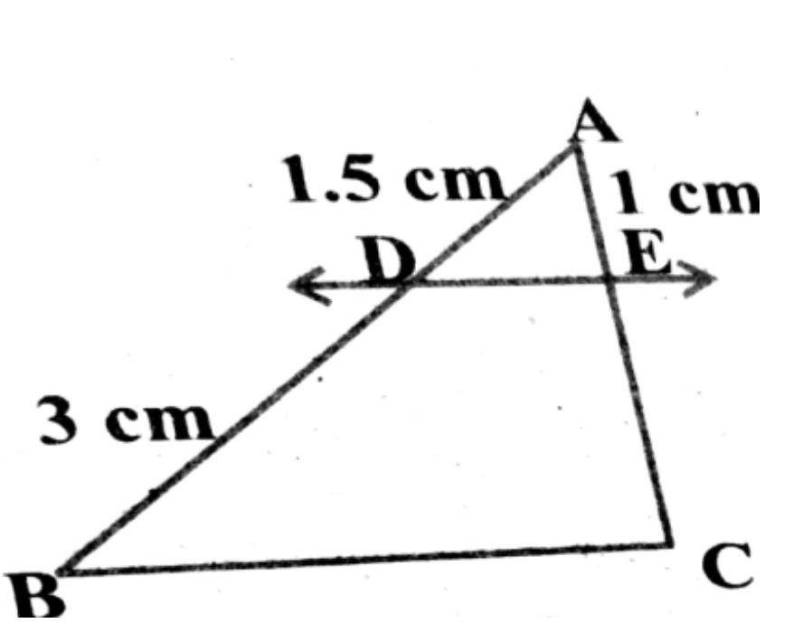 Q 19 - Sample Paper.jpg