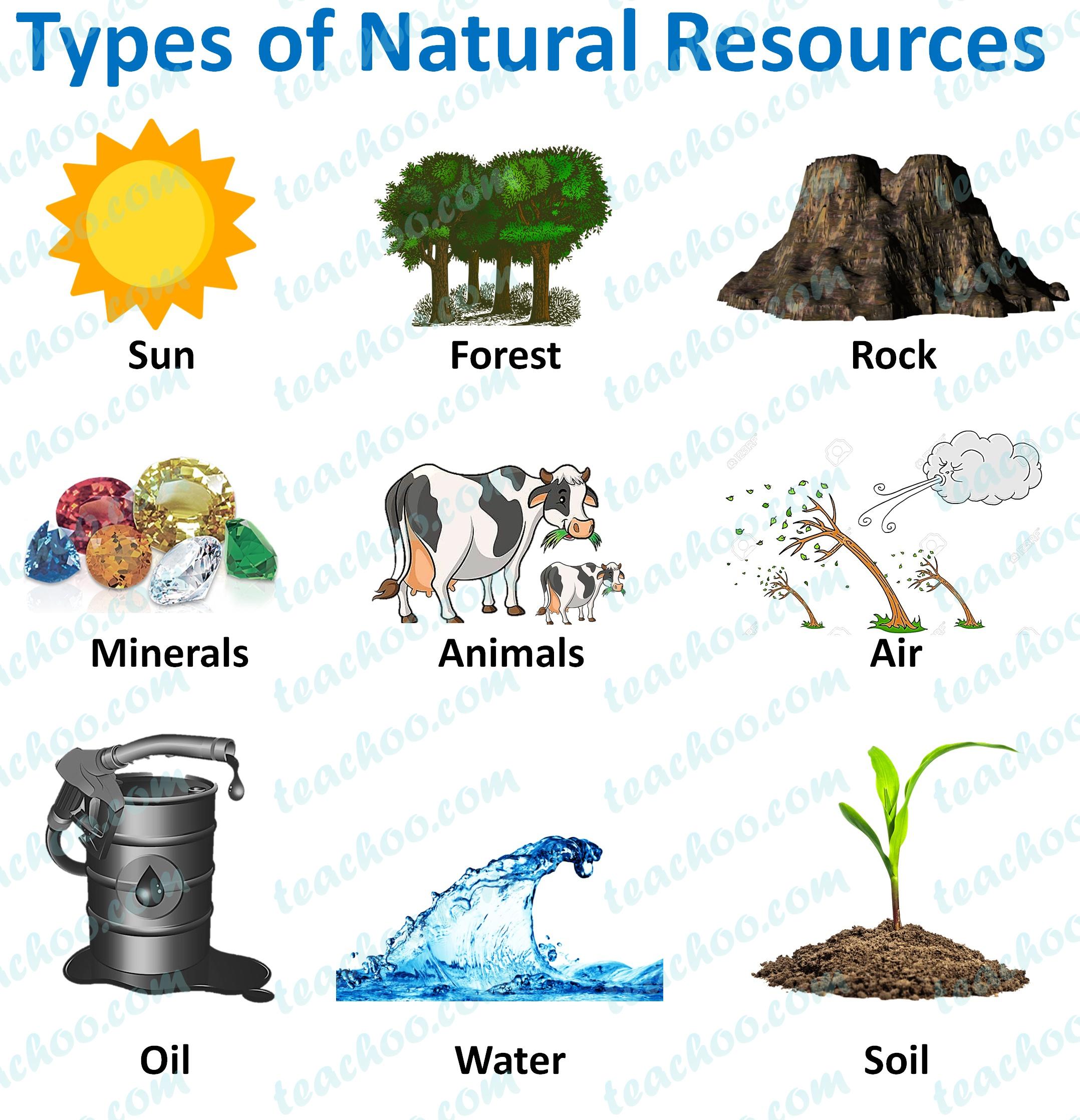 types-of-natural-resources---teachoo.jpg