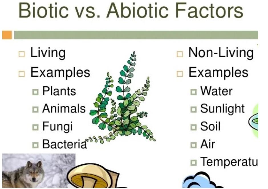Biotic vs Abiotic Factors - Teachoo.jpg