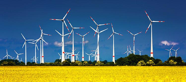 Wind Energy Farms.jpg