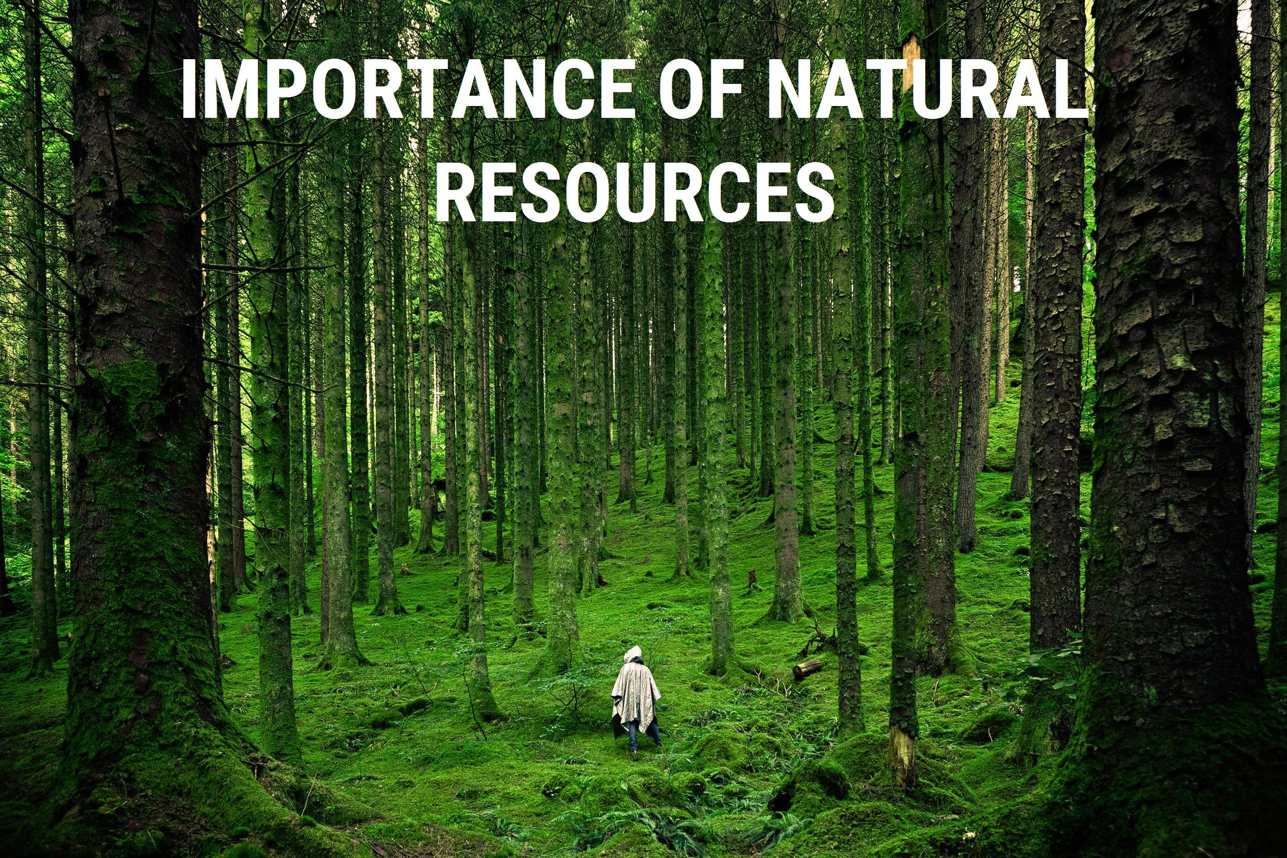 Importance of Natural Resources - Teachoo.jpg