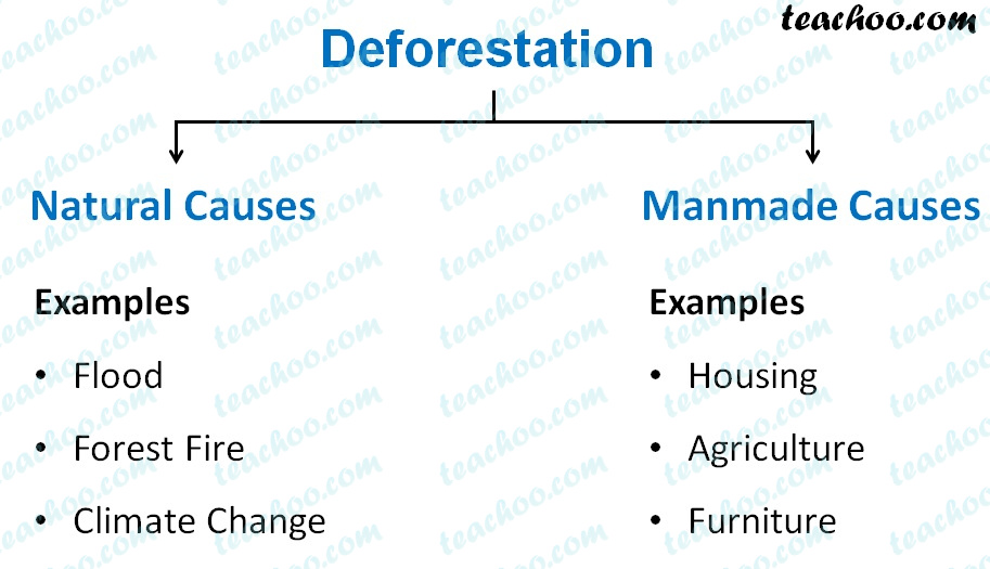 deforestation---natural-and-manmade-causes---teachoo.jpg