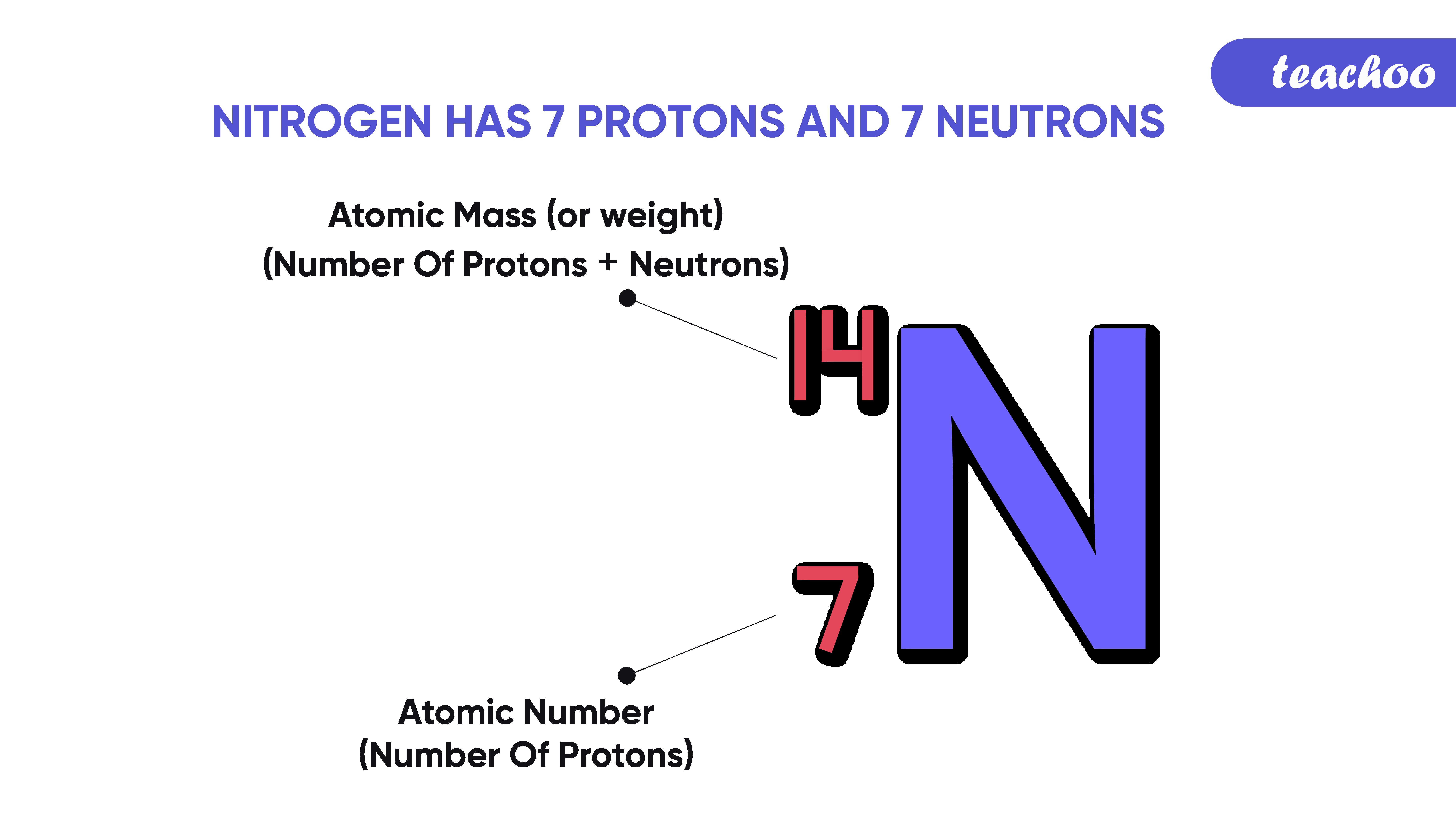 34. Nitrogen has 7 Protons and 7 Neutrons-Teachoo-01.png