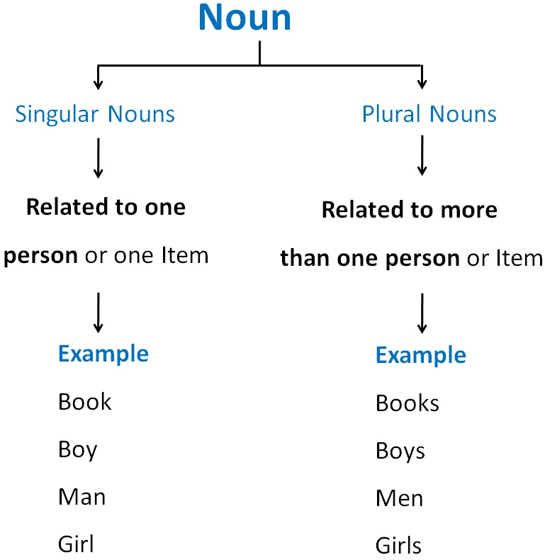 What are Singular and Plural Nouns? - Singular and Plural Nouns