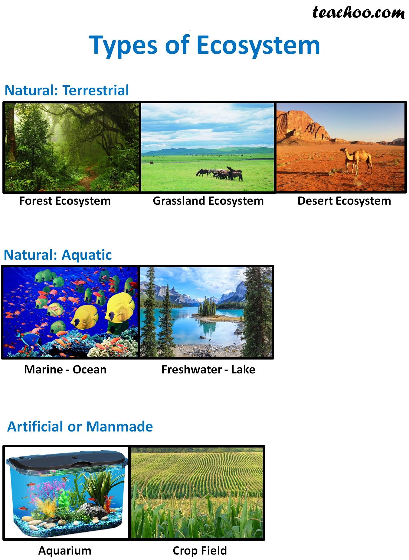 Types of Ecosystem - Teachoo.jpg