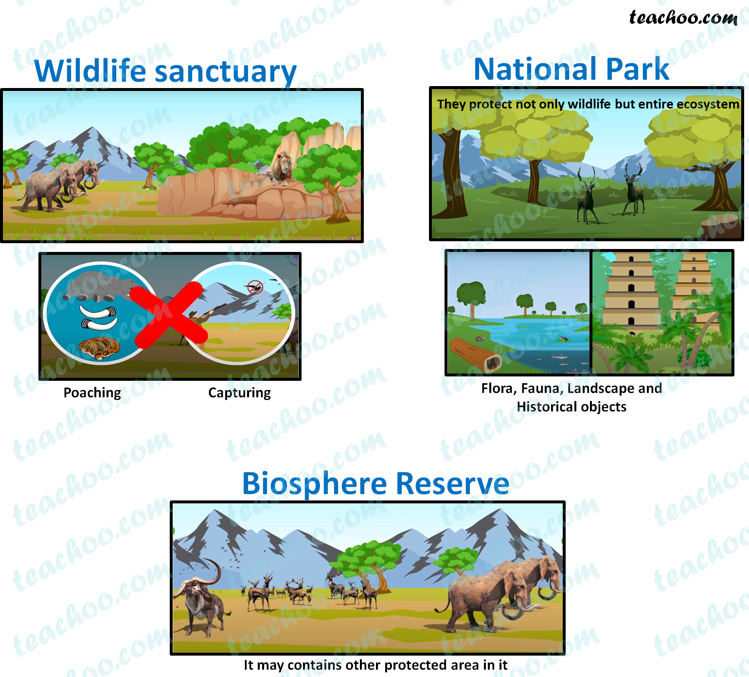 difference-between-wildlife-sanctuary,-national-parks-and-biosphere-reserve-teachoo.png