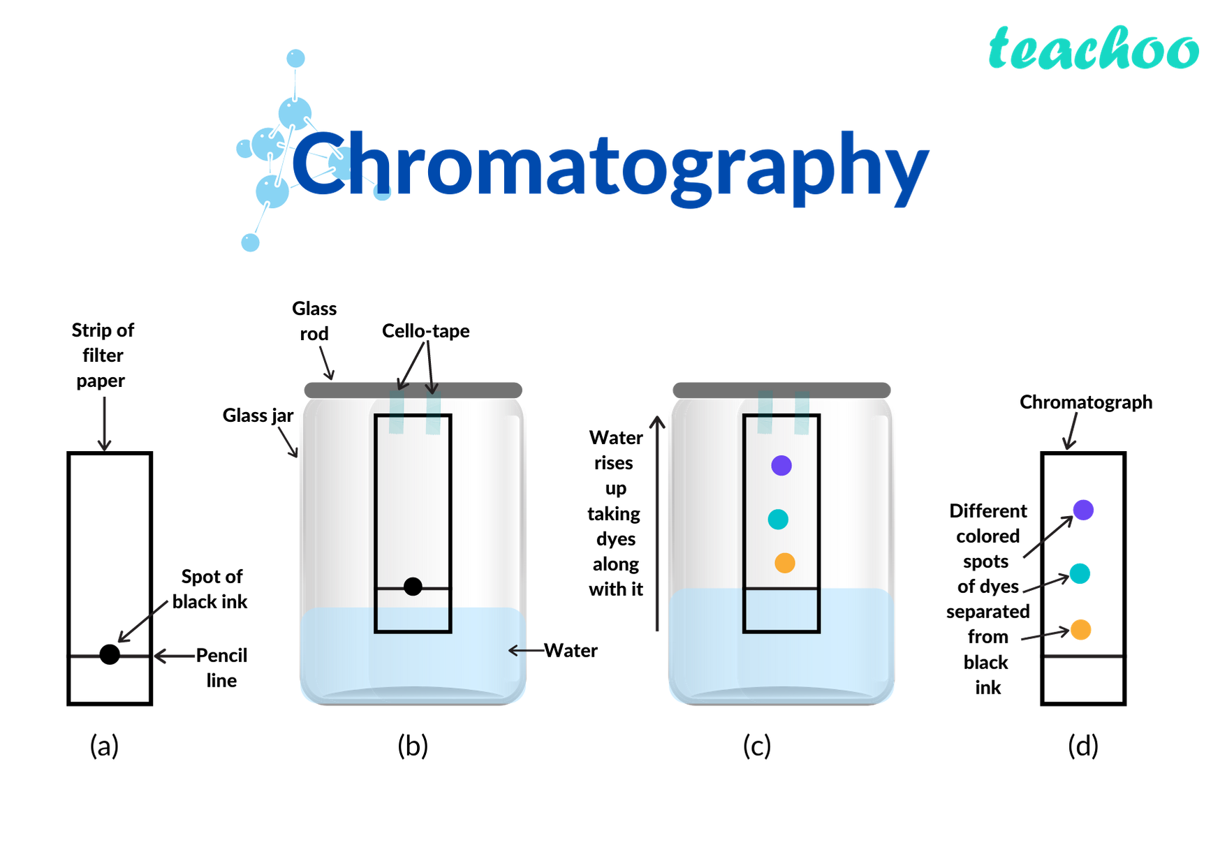 chromatography.png