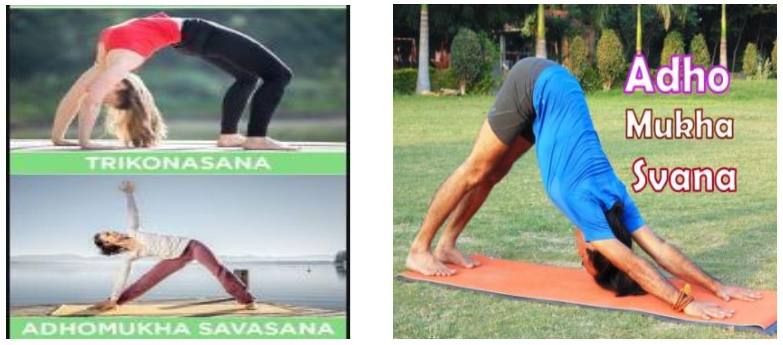 An asana is a body posture, originally - Teachoo.jpg