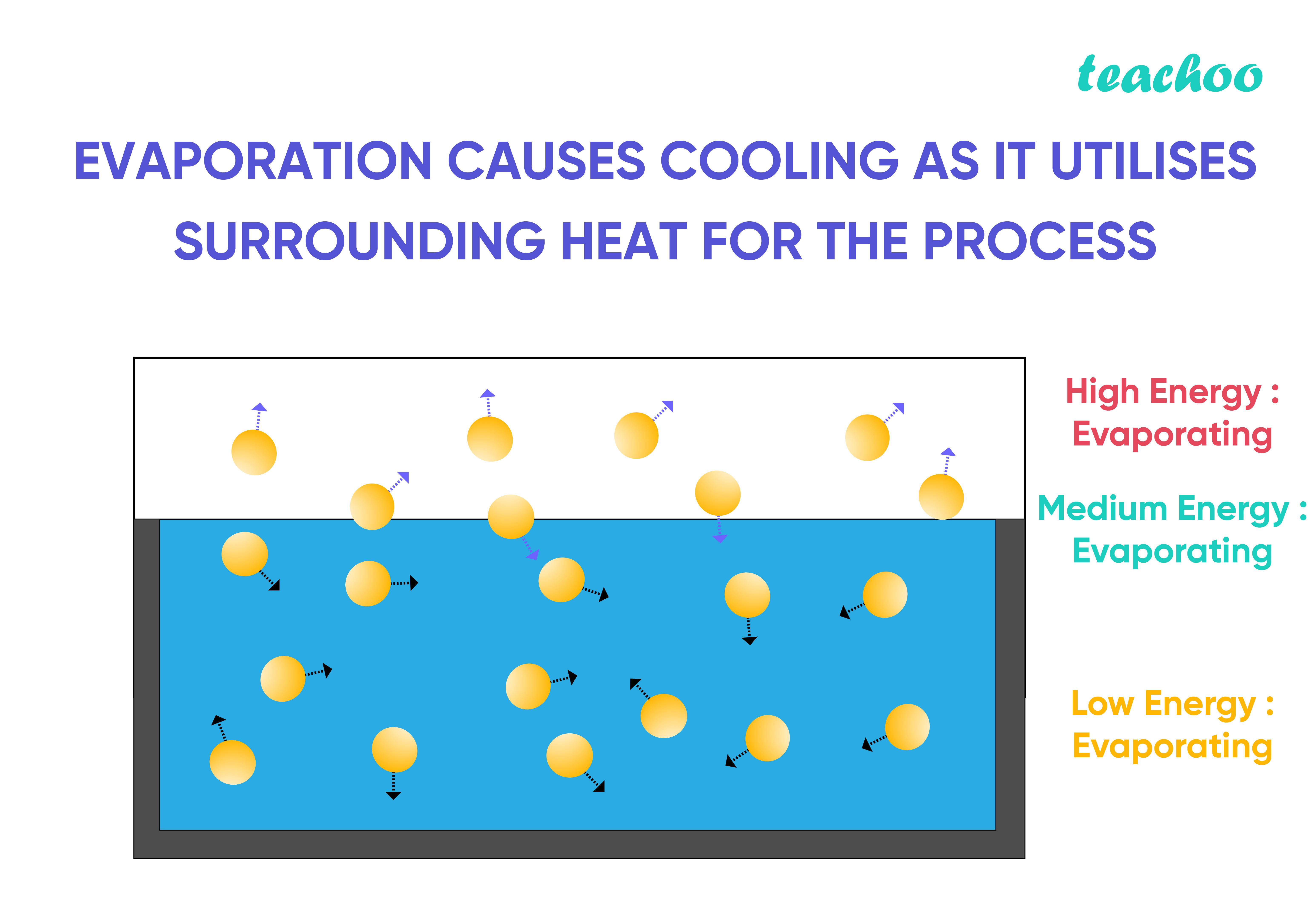 Evaporation causes cooling as it utilises surrounding heat for the process-Teachoo-01.jpg
