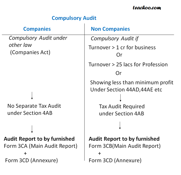 Compulsory Audit Requirement for Companies			 - Basics