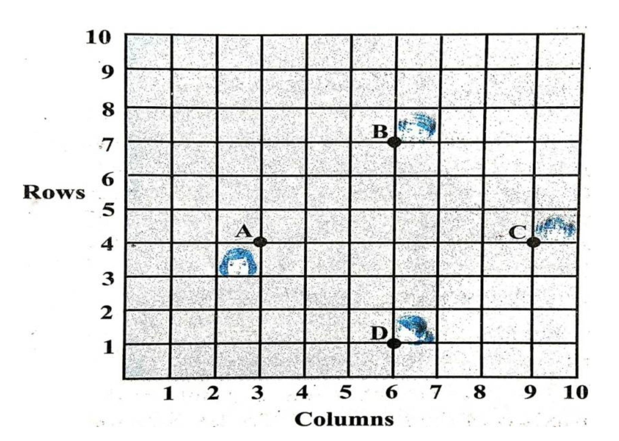 Q 33 - Sample Paper.jpg