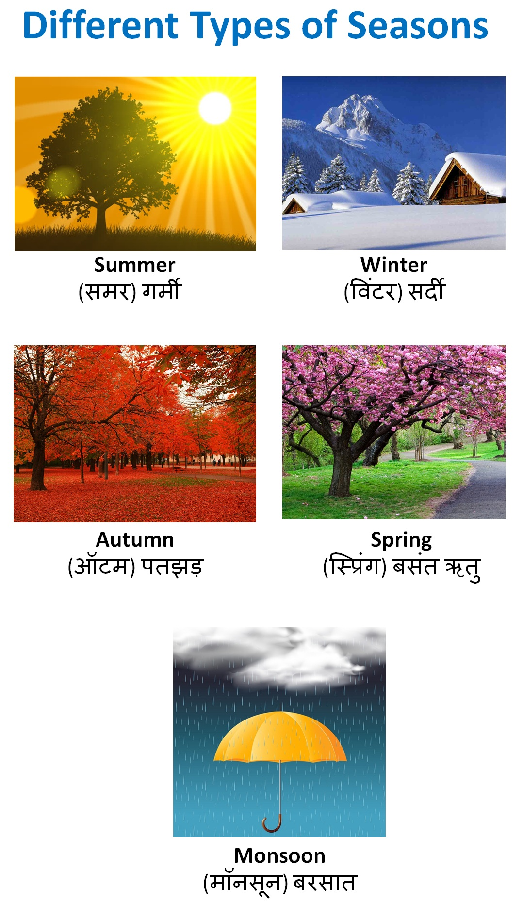 Different Types of Seasons.jpg