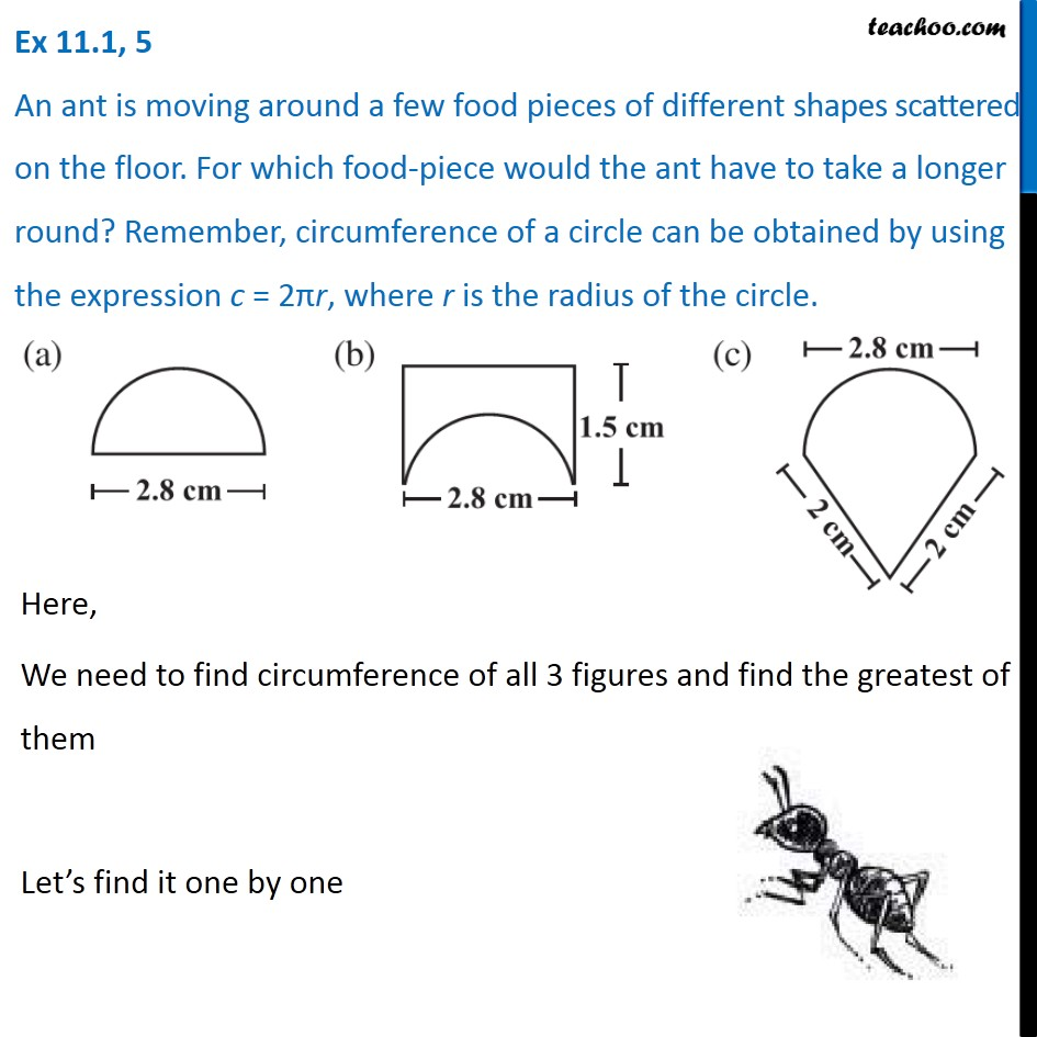 Ex 11.1, 5 - An ant is moving around a few food pieces of different