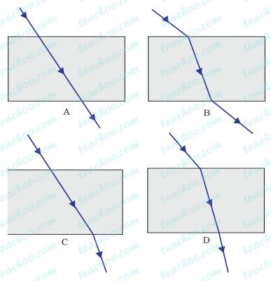 fig-10.5.jpg