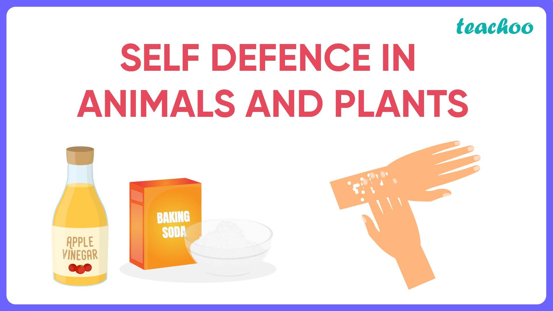 Self Defence in Animals and Plants-Teachoo.jpg