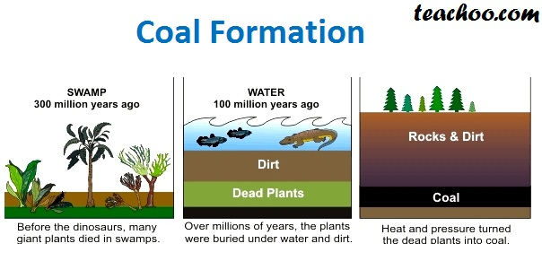 Coal formation - Teachoo.jpg