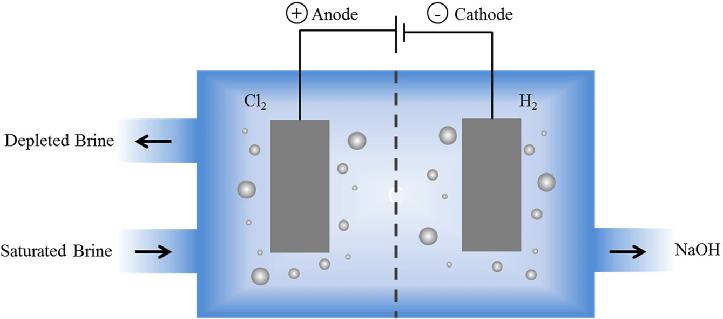 Schematic-diagram-of-chlor-alkali-process - Teachoo.png
