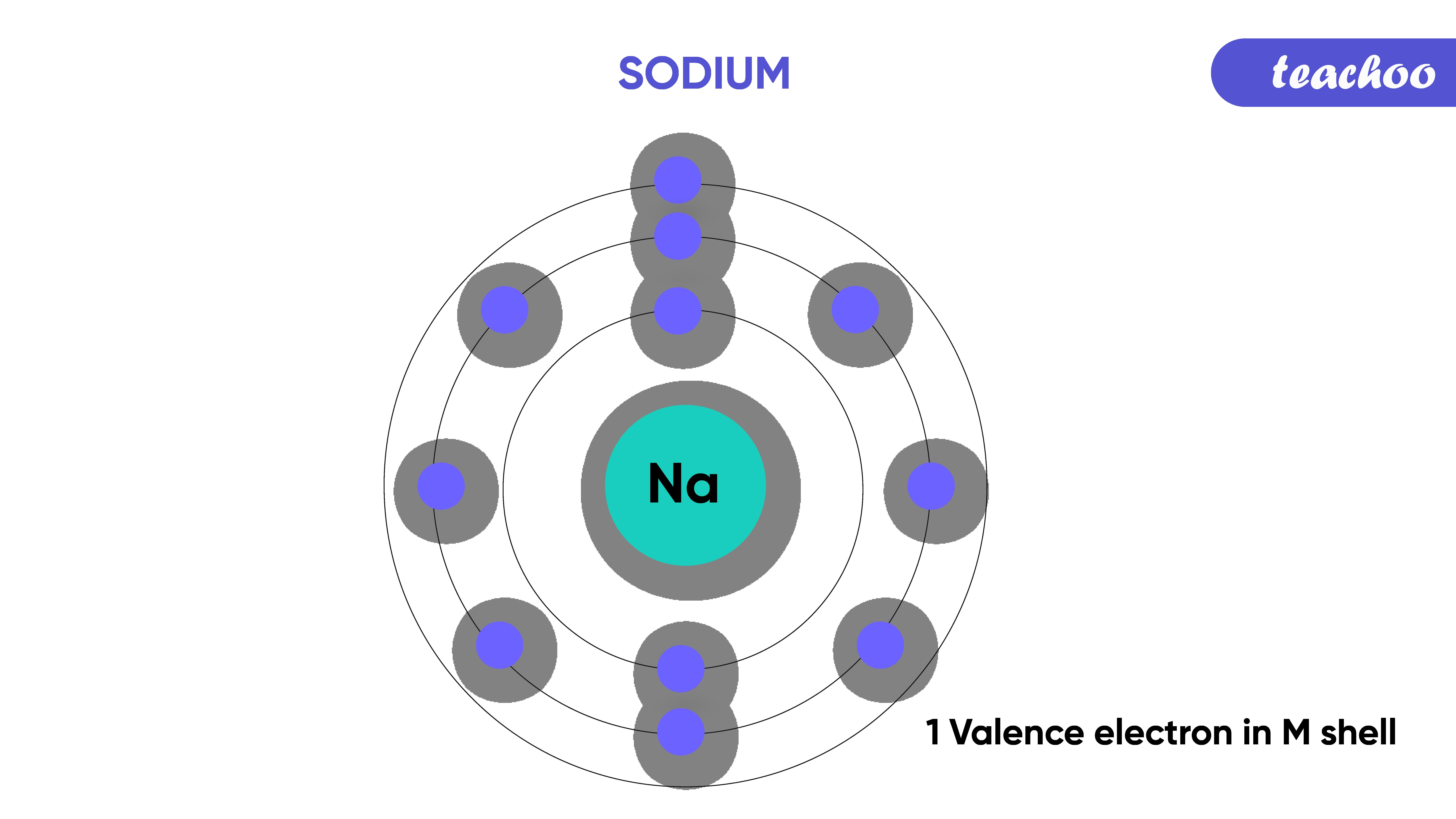 18.sodium-Teachoo-01.png