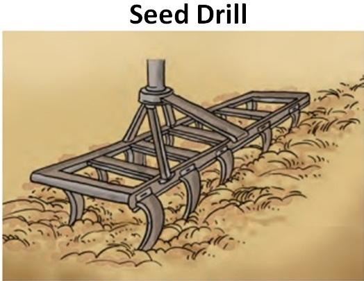 Seed Drill.jpg