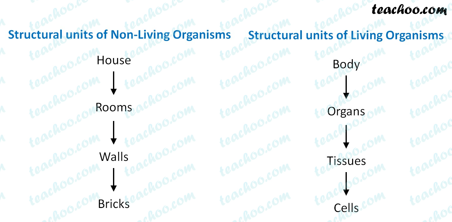 structural-units-of-living-and-non-living-organisms---teachoo.jpg