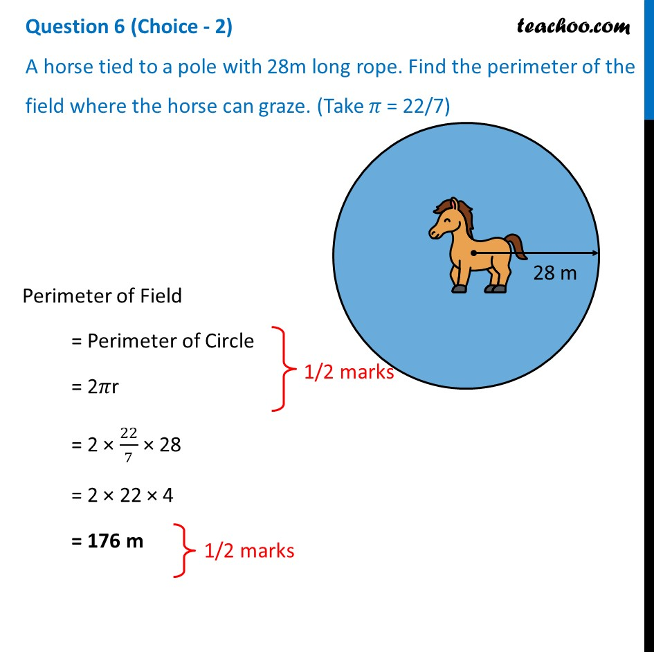 A horse tied to a pole with 28m long rope. Find the perimeter of field