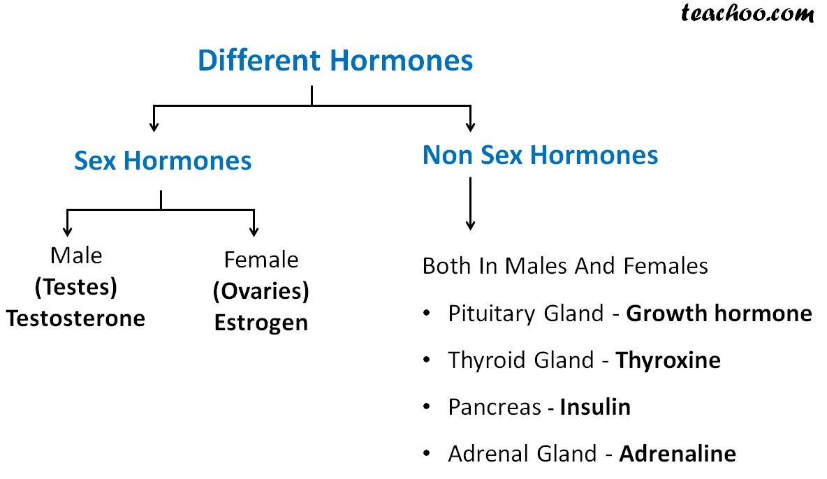 Different Sex and Non sex Hormones.jpg