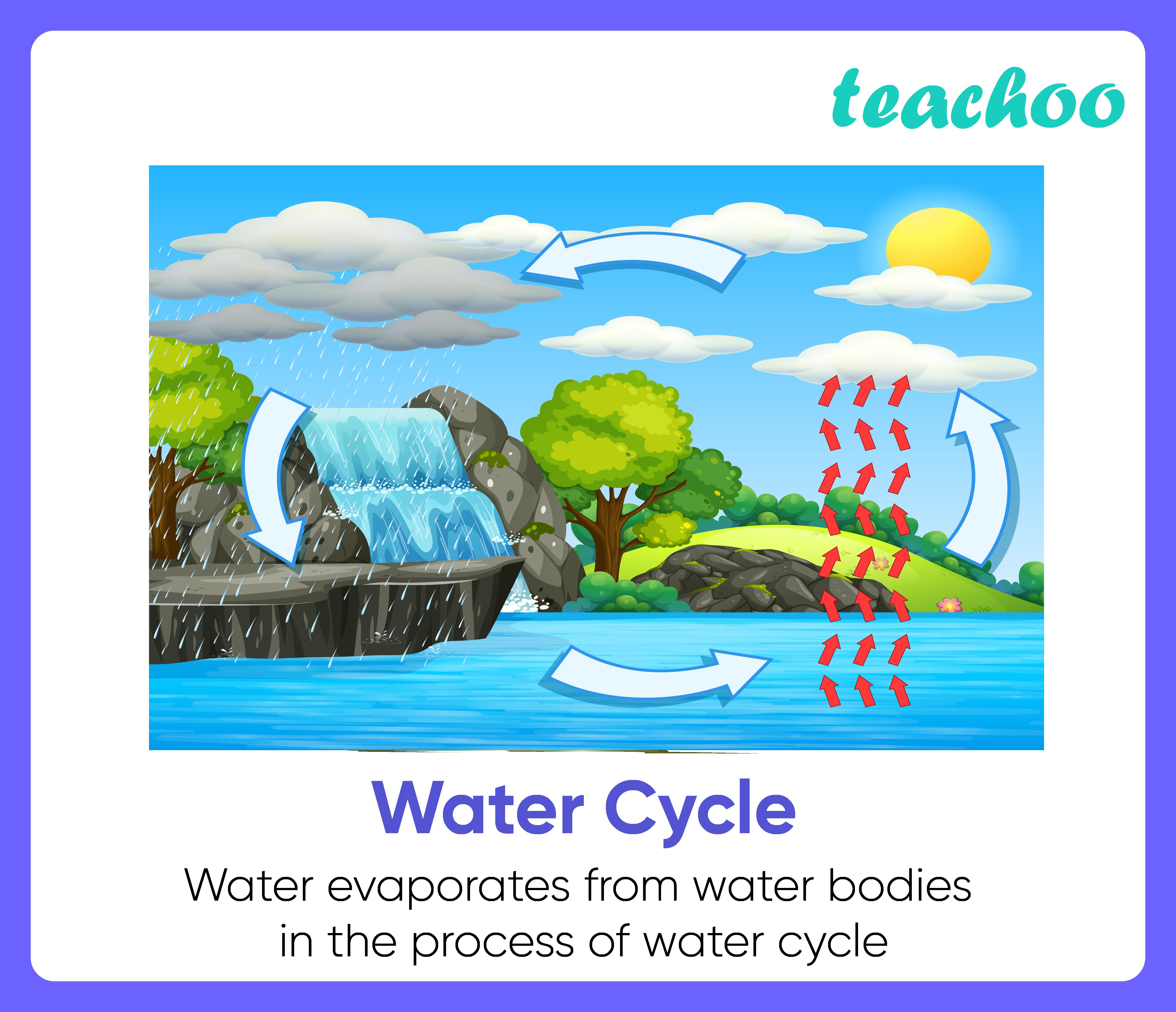 Water Cycle-Teachoo-01.png
