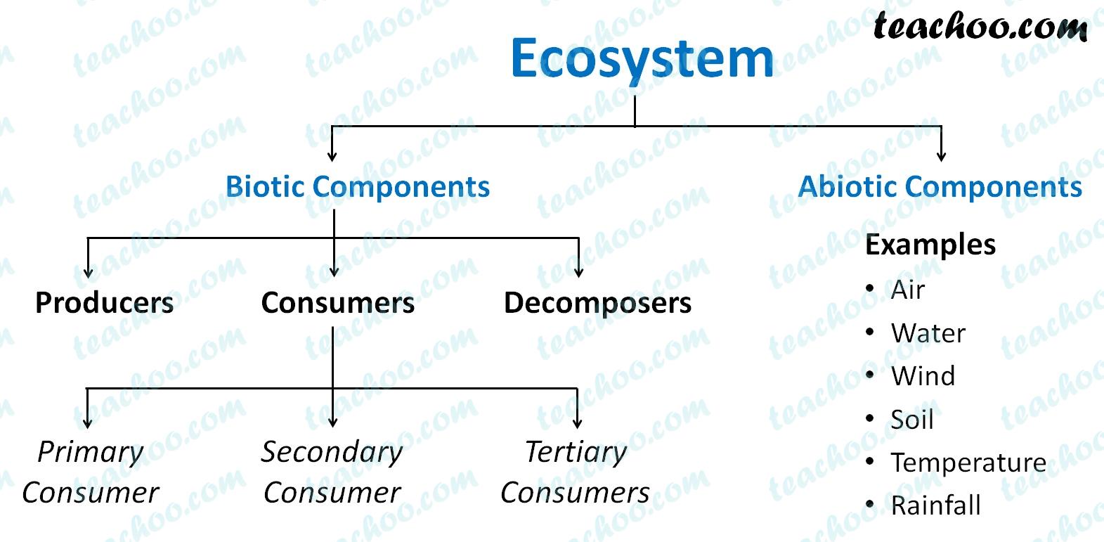components-of-an-ecosystem---teachoo.jpg