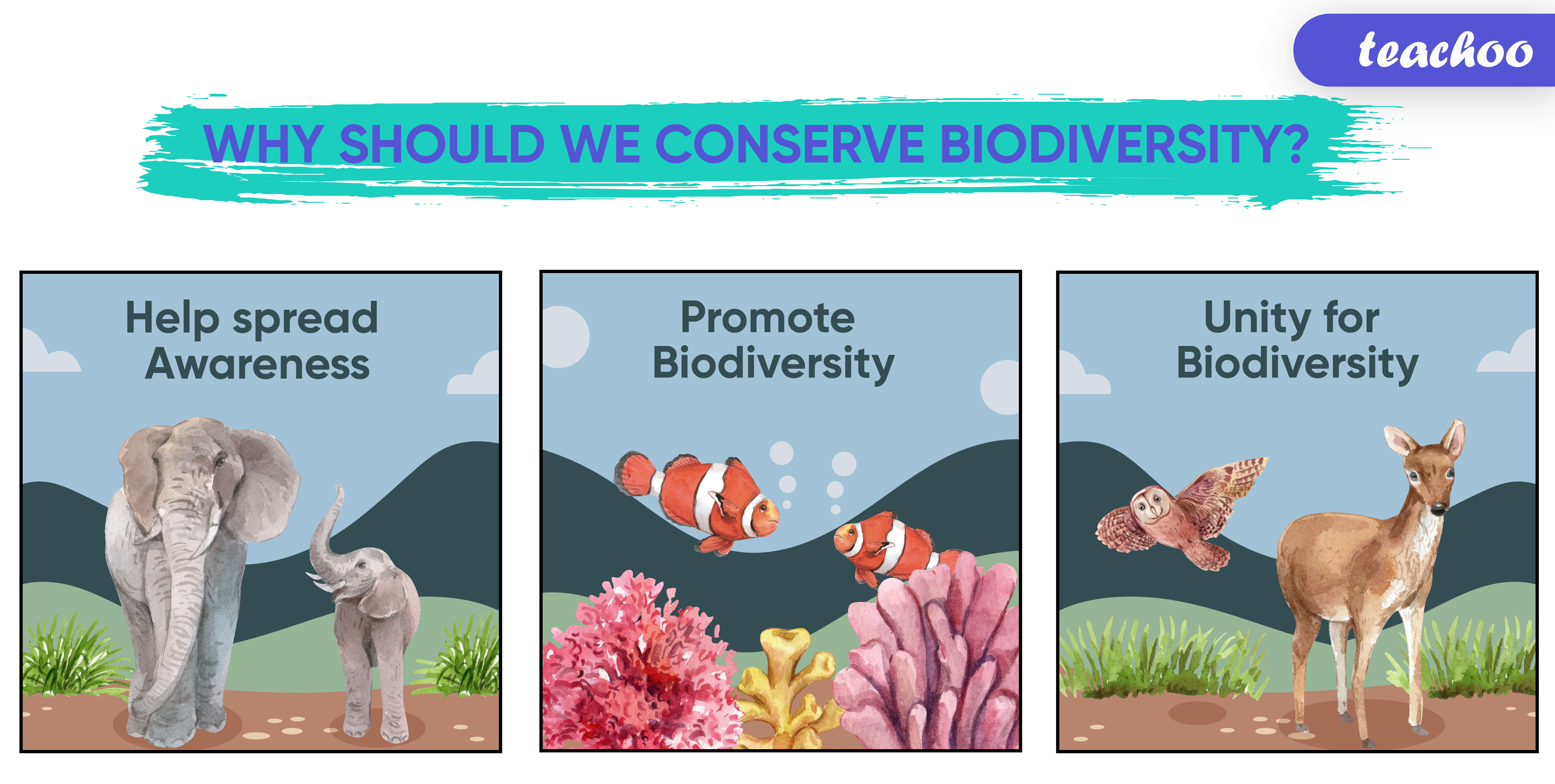 Why should we conserve biodiversity -01.jpg