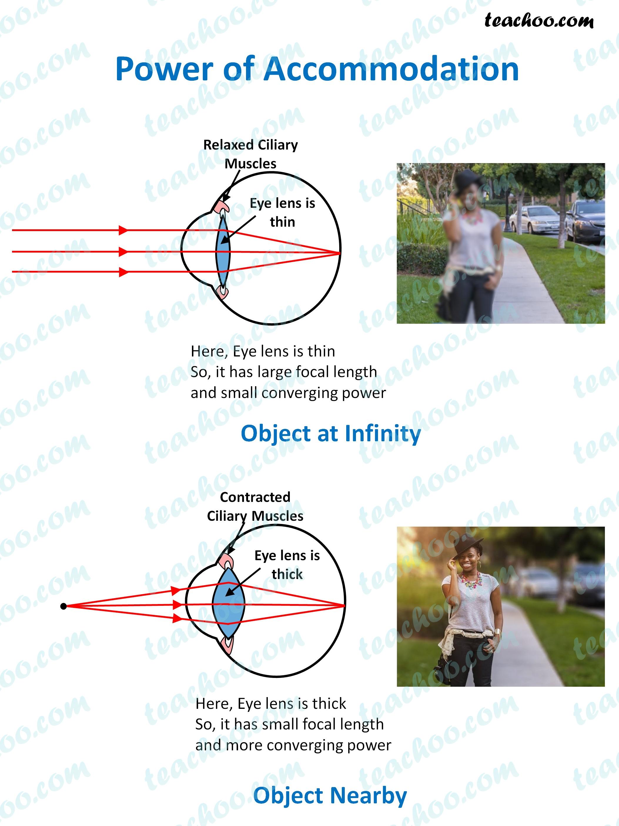 power-of-accomodation---of-near-and-far-objects---teachoo.jpg