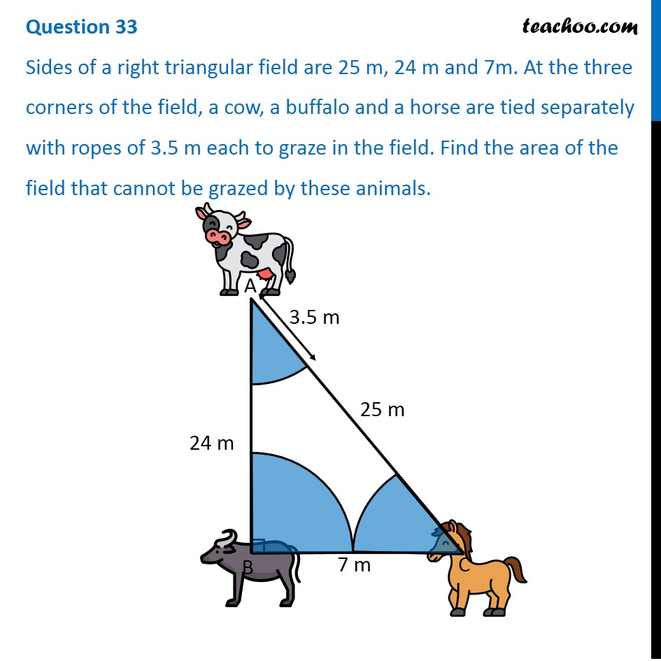 Sides of a right triangular field are 25 m, 24 m and 7m. At the three