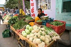 Nimaaj-Vegetable-vendor.jpg