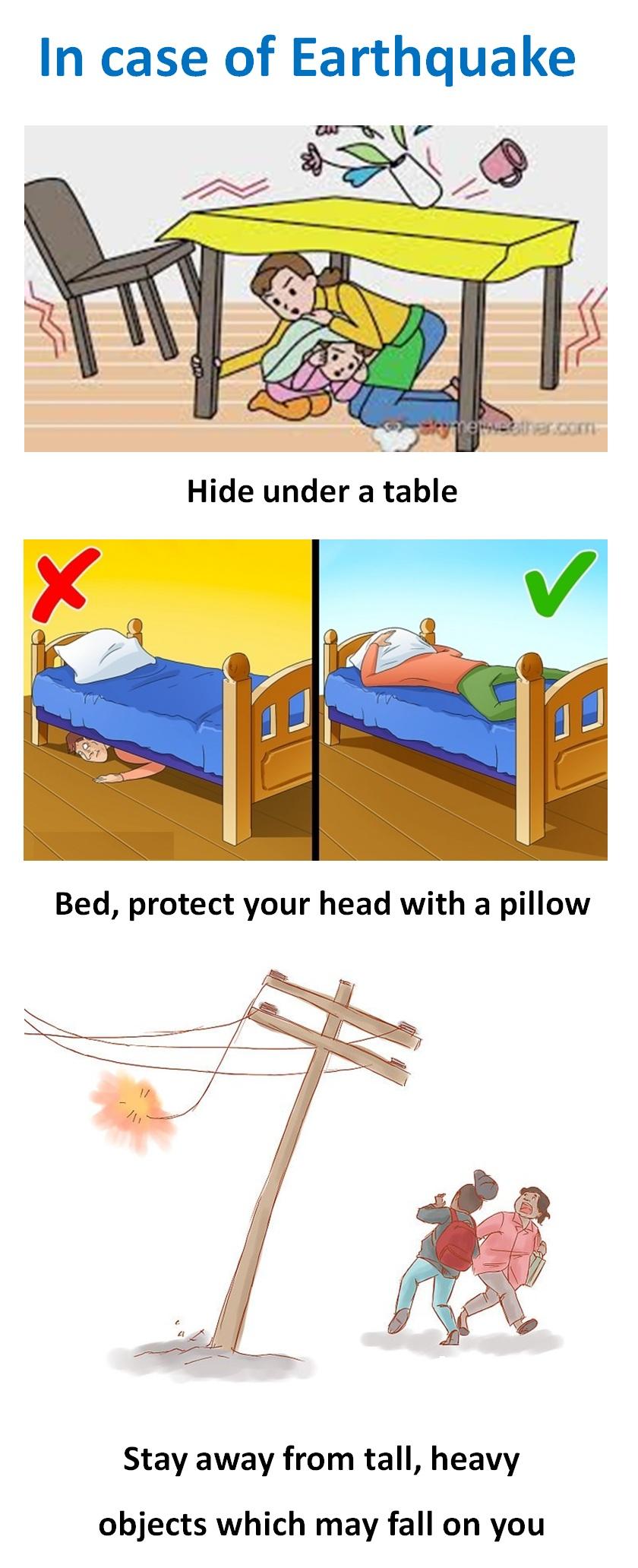 In Case of Earthquake - Teachoo.jpg
