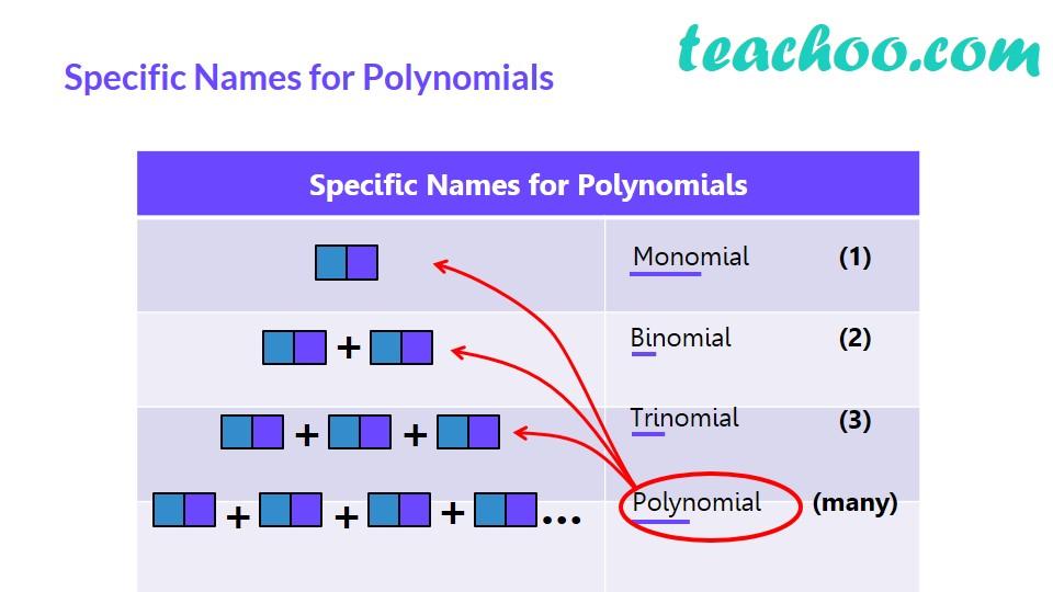 Polynomials - Part 7