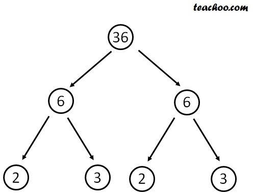 Facror tree of 36 i.jpg